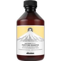 Шампунь очищающий против перхоти DAVINES NATURAL TECH Purifying Shampoo 250 мл