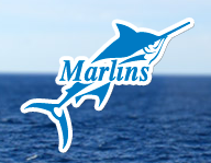 Подготовка к Марлинс тесту Marlins Test
