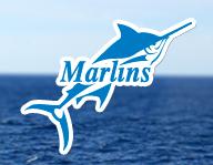 Подготовка к Марлинс тесту Marlins Test