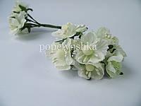 """Бутоньєрка  """"Яблуневий цвіт""""  молочна 4 см"""