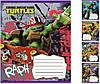 """Тетрадь 12 листов косая линия """"Зошит України"""" Mutant Ninja Turtles. Drive -15"""