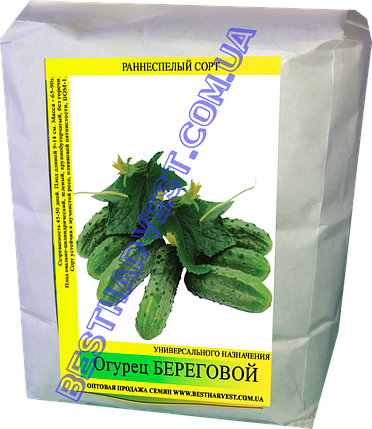 Семена огурца Береговой 0,5кг, фото 2