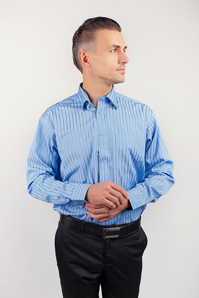 Рубашка Fra №869-13 цвет Голубой