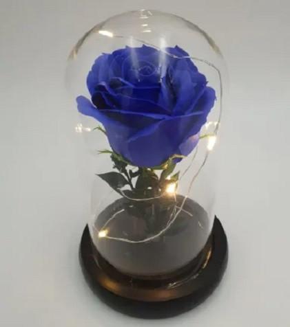 Роза синяяя в колбе с LED подсветкой № А51
