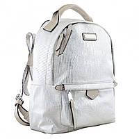 Рюкзак молодёжный YW-27, 22*32*12, серебряный, фото 1
