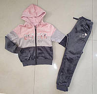 Велюровый спортивный костюм-двойка для девочек Setty Koop 16 лет, фото 1