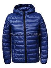 Мужская демисезонная куртка GLO-Story,Венгрия (Большие размеры)