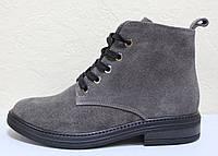 Ботинки серые замшевые женские демисезонные от производителя модель РИ104, фото 1