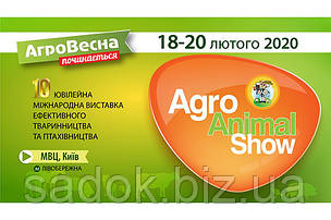 АГРО ВЕСТА-2020. Фрукти і овочі логістика