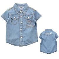 Тениска джинс Merkiato C2477 цвет : голубой; размер : 122