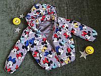"""Дитяча демісезонна куртка """"Міккі"""", на року"""