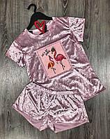 Модная велюровая пижама с фламинго, комплект футболка и шорты.