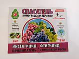 Спасатель Виноград, Кустарники 25 шт, фото 2