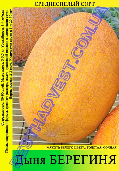 Семена дыни Берегиня 10 кг (мешок)
