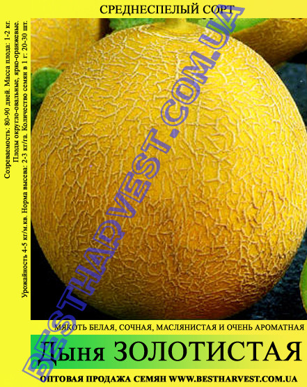 Семена дыни Золотистая 10кг, мешок, среднеспелая