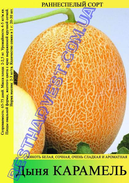 Семена дыни Карамель 10кг (мешок)