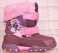 Зимние ботинки SUPER GEAR лиловые, фото 1