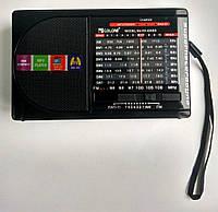Портативний радіоприймач Golon RX-6688 black