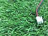 Кнопка включения для гироскутера Viper 6,5, фото 2