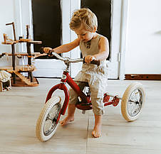 Беговел Trybike двухколесный Красный (TBS-2-RED-VIN), фото 3