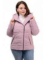 Куртка женская деми Агата , размеры 50-56, пудра