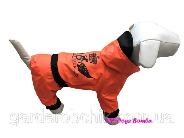 Дождевик, комбинезон для собаки М-39. Одежда для собак