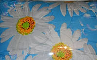 Одеяло двуспальное шерстяное, 170*210 см, ткань полиэстер.(арт.2915)