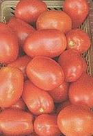 Томат Monty F1 (Монти F1) - Seminis (Семинис), уп. 1000 семян