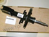Амортизаторы передние Renault Megane III ОРИГИНАЛ 543020008R