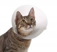 Ветеринарный воротник для кошек  Trixie, 22-25 см / 7,5 см