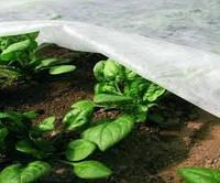 Агроволокно спанбонд 6,35/100 30 г/м2 Premium-agro (Польша)