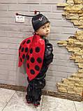 Карнавальный костюм божьей коровки мальчика, фото 3