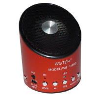 Радио колонка WS-139-RC