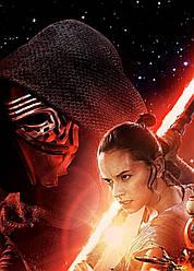 Картина GeekLand Star Wars Звёздные Эпизод 7 40х60см SW.09.042