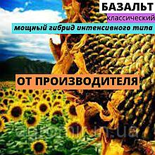 Семена подсолнечника гибрид Базальт первое поколение от АФ НПП АГРОМИР