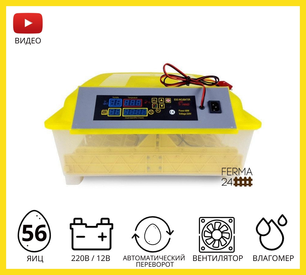 Інкубатор автоматичний HHD 56(12v)