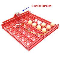 Красный лоток автоматического переворота для инкубатора на 36 (144) яиц с мотором, фото 1
