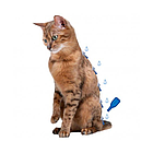Капли от блох и клещей Beaphar IMMO Shield для котов и котят (цена за упаковку 3 шт), фото 3
