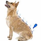Капли от блох и клещей для собак весом 1-15 кг Beaphar IMMO Shield 3 шт/уп, фото 3