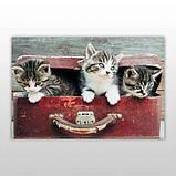 Мини-пазл 54 элемента Код: PZ-1605 Котята в чемодане Бумагия, фото 3