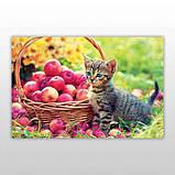 Мини-пазл 54 элемента Код: PZ-1606 Котёнок в яблоках Бумагия, фото 3