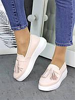 Туфли лоферы кожа пудра 7260-28