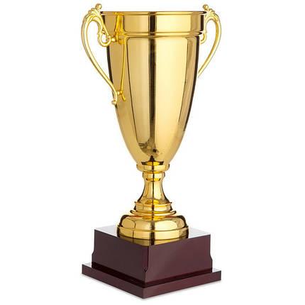 Кубок спортивный с ручками (металл, пластик, h-40см, b-25см, d чаши-16см, золото) PZ-1465C, фото 2