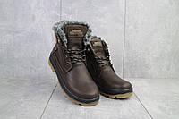 Подростковые ботинки кожаные зимние коричневые-матовые Zangak 137 кор-кр, фото 1
