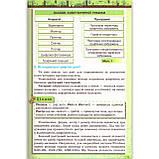 Підручник Інформатика 6 клас Авт: Морзе Н. Барна О. Вембер В. Вид: Оріон, фото 4