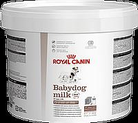 Royal Canin Babydog Milk 2кг - заменитель молока для щенков с рождения до отъема