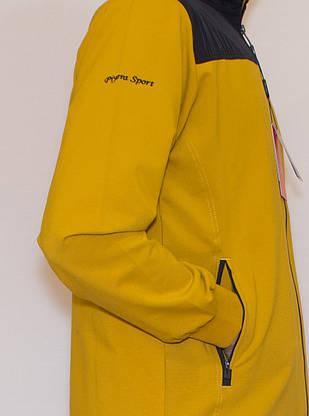 Спортивний костюм турецький чоловічий Piyera 7496 (M-3XL), фото 2