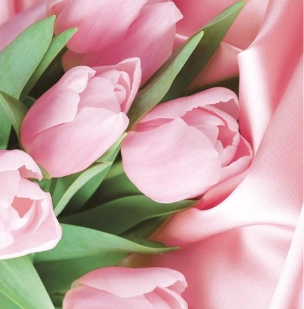 Подарочный бумажный пакет КВАДРАТ 24*24*10 см Тюльпаны розовые