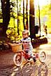 Беговел Trybike, фото 3