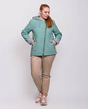 Женская куртка- ветровка  с капюшоном батал - М 4145, фото 3